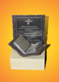 Prêmio Reconhecimento dos Consultores do Sebrae/RS